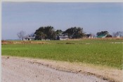 Currituck County farmland
